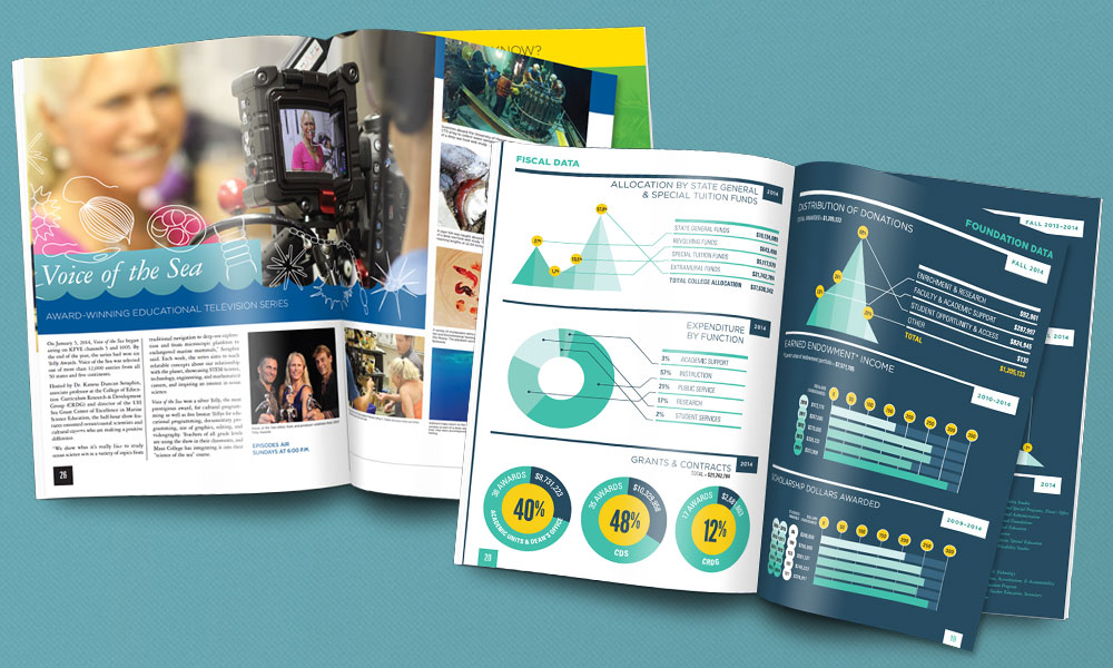 editorial annual report graphic design layout